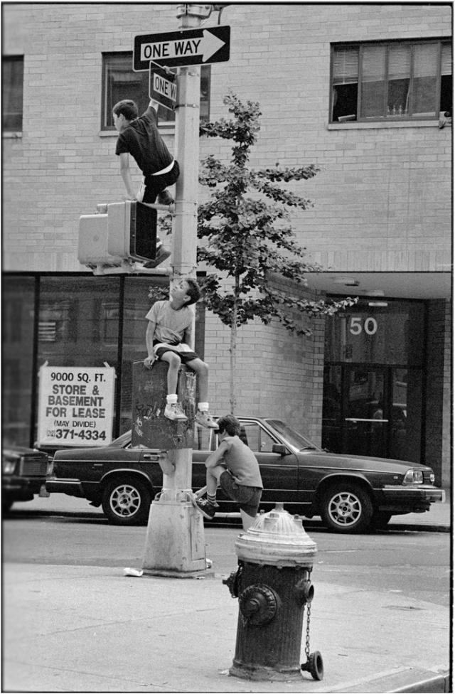 kids-climbing-nyc-matt-weber